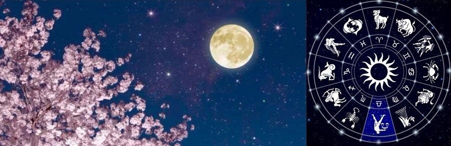 La Luna Piena Rosa: L'Interludio e l'Affinità